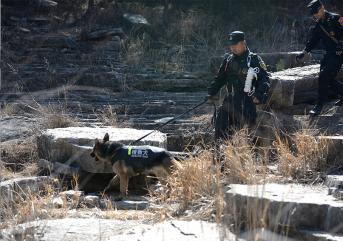 保安在遇到特殊情况时的处理方法!